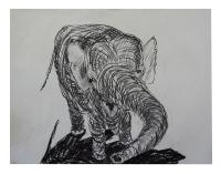 8-4-2013-Artis-(19)