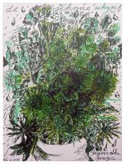 27-8-2015-groen1